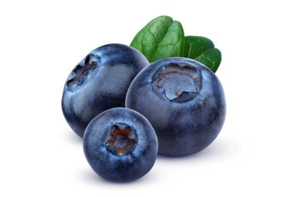 blauwe-bessen